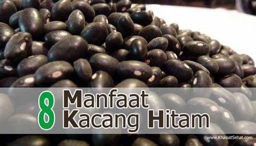 Kacang Hitam - Manfaat dan Kegunaan Kesehatan Kacang ini digunakan untuk